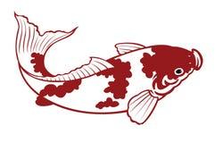 De vissen van de karper Stock Foto
