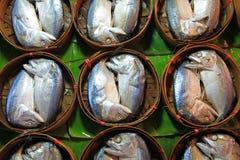 De vissen van de makreel in bamboemand Stock Afbeeldingen