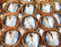 De vissen van de makreel in bamboemand in Thailand Royalty-vrije Stock Afbeelding