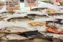 De Vissen van de vissenmarkt Stock Foto's
