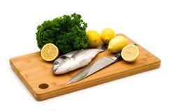 De vissen van Dorada Royalty-vrije Stock Fotografie
