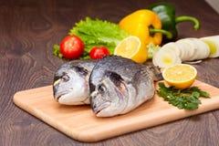 De vissen van Dorado Stock Foto's