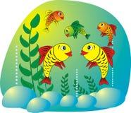 De vissen van het aquarium royalty-vrije illustratie