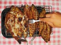 De vissen van het kampvuur Royalty-vrije Stock Afbeelding