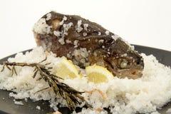 De vissen van het voedsel royalty-vrije stock afbeelding