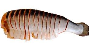 De vissen zijrood van de forel royalty-vrije stock fotografie