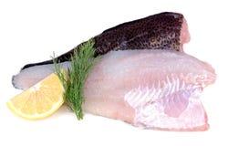 De vissenfilets van de kabeljauw Stock Foto