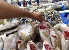 In de vissenmarkt stock foto's
