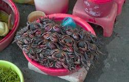 De vissenmarkt kan binnen Tho, Vietnam Stock Afbeelding