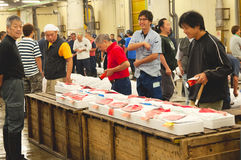 De vissenmarkt van Tsukiji Royalty-vrije Stock Afbeelding