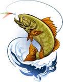 De visserij Royalty-vrije Stock Foto's