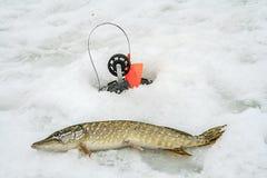 De visserij van de winter Stock Afbeelding
