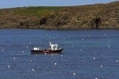 De visserij van de zeekreeft Stock Afbeeldingen