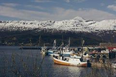 De visserij van dorp in Noorwegen stock afbeelding