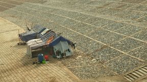 De visserij van een hut op de waterkant Royalty-vrije Stock Afbeeldingen