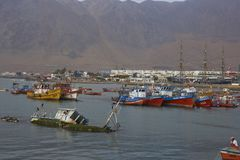 De visserij van haven van Iquique, Chili Stock Foto's