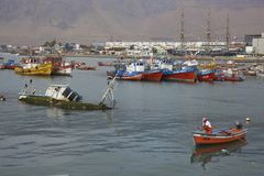 De visserij van haven van Iquique, Chili Royalty-vrije Stock Fotografie