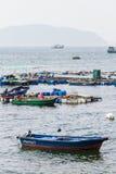 De visserij van landbouwbedrijf bij Graseiland Royalty-vrije Stock Foto's
