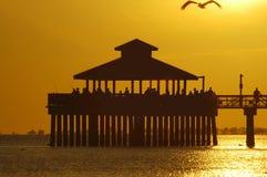 De visserij van pijler met vliegende pelikaan Stock Afbeeldingen