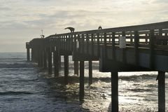 De visserij van pijler op St Augustine strand Royalty-vrije Stock Foto