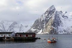 De visserij van schip in Lofoten-Archipel stock fotografie