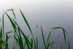 De visserij van vlotter in het riet stock afbeelding