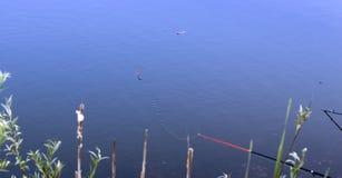 De visserij van vlotter op het water stock foto