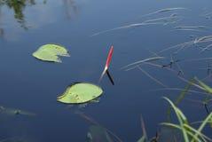 De visserij van vlotter op water Stock Afbeeldingen