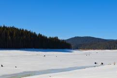 De visserij van de winter royalty-vrije stock foto's
