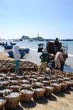 De visserij wordt gevestigd op het strand in vele manden wachtend op het uploaden op de vrachtwagen aan de verwerkingsinstallatie Royalty-vrije Stock Afbeelding