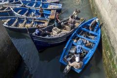 De vissers keren met hun vangst terug naar de bezige haven in Essaouira in Marokko Royalty-vrije Stock Fotografie