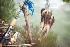 De vissers vangen stock afbeelding