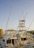 De vissersboten van de sport in een jachthaven Stock Fotografie