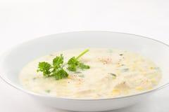 De Vissoep van het graan met Kip Stock Afbeeldingen