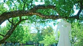 De vita klänninghängningarna för bröllop på träd stock video