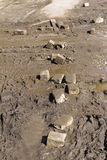 De vita tegelstenarna som ligger i gyttjan Royaltyfri Fotografi