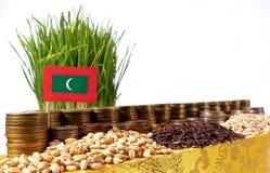 De vlag die van de Maldiven met stapel geldmuntstukken en stapels van tarwe golven Stock Afbeeldingen
