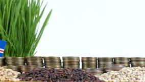 De vlag die van Kaapverdië met stapel geldmuntstukken en stapels van tarwe golven stock footage