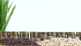 De vlag die van Kenia met stapel geldmuntstukken en stapels van tarwe golven stock videobeelden