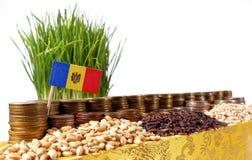 De vlag die van Moldavië met stapel geldmuntstukken en stapels van tarwe golven royalty-vrije stock afbeelding