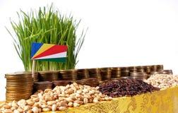 De vlag die van Seychellen met stapel geldmuntstukken en stapels van tarwe golven Stock Afbeelding