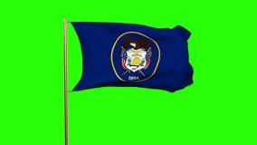 De vlag die van Utah in de wind golven Het groene alpha- scherm, stock video