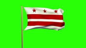 De vlag die van Washington gelijkstroom in de wind golven Groen stock video