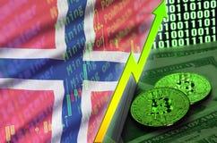 De vlag en cryptocurrency groeiende tendens van Noorwegen met twee bitcoins op dollarrekeningen en binaire codevertoning stock illustratie