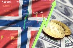De vlag en cryptocurrency groeiende tendens van Noorwegen met twee bitcoins op dollarrekeningen vector illustratie