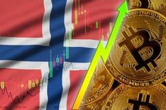 De vlag en cryptocurrency groeiende tendens van Noorwegen met vele gouden bitcoins stock illustratie