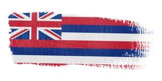 De Vlag Hawaï van de penseelstreek vector illustratie