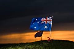 De vlag van Aussie met papavers 1 Stock Afbeeldingen