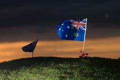 De vlag van Aussie met papavers 3 Stock Afbeelding