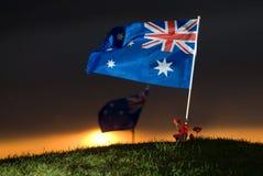 De vlag van Aussie met papavers 5 Royalty-vrije Stock Afbeelding